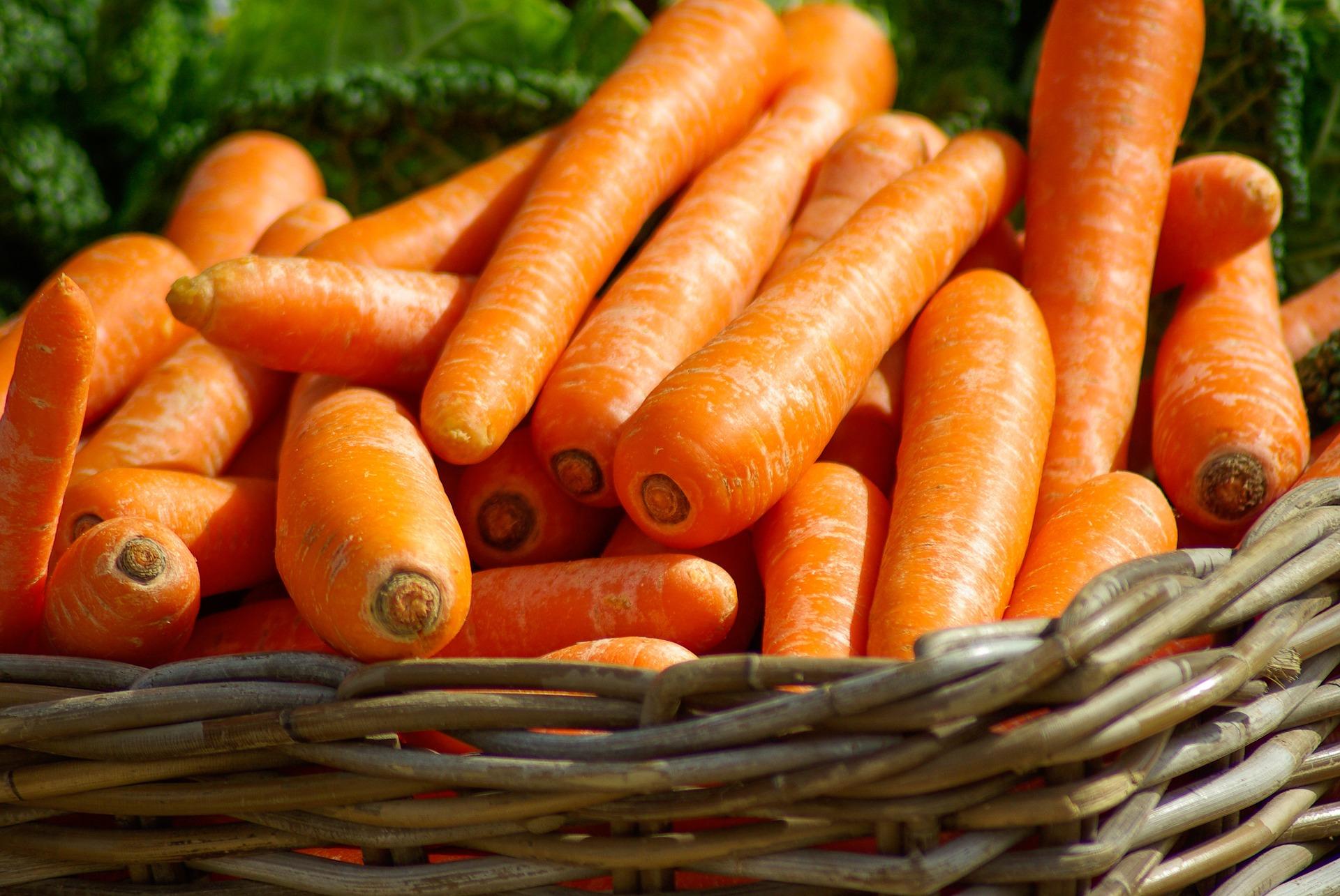 Jedzenie sezonowe marchew